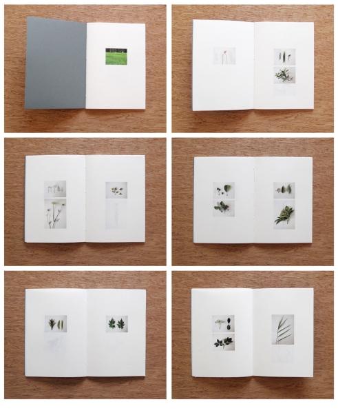Industrial Arboretum / book
